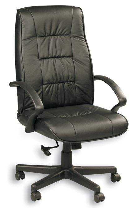Eurotech High Back Black Leather Office Chair - Esteem 515