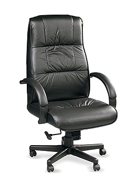 Eurotech High Back Black Leather Office Chair - Ace 708