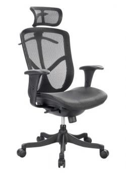 Eurotech High Back Ergonomic Office Chair - Fuzion FUZ6B-HI