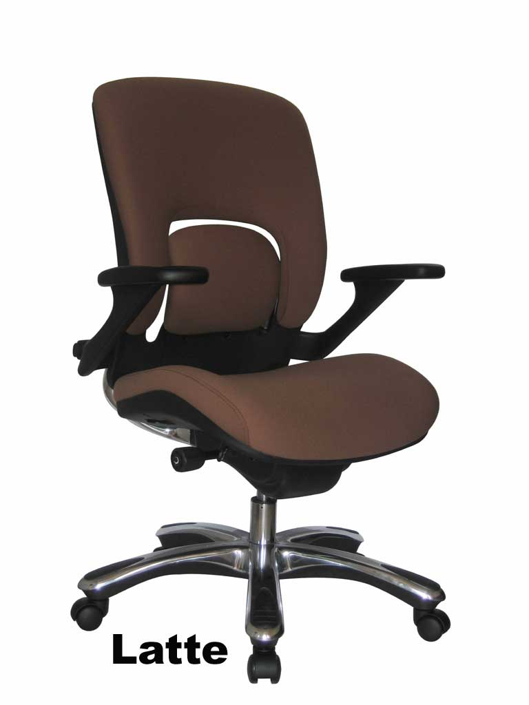 Charmant Eurotech Mid Back Ergonomic Office Chair   Vapor FE22VAP