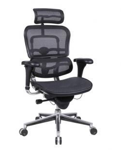 Eurotech High Back Mesh Ergonomic Chair - Ergohuman Mesh ME7ERG