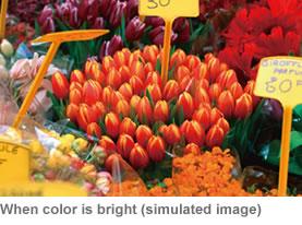 Hitachi CP-RX82 Amazing Color