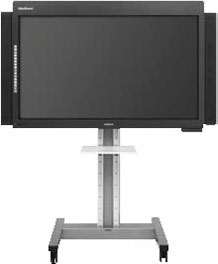 Interactive plasma display P65X-DUO