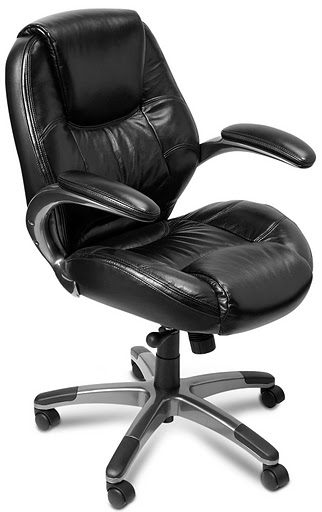 Mayline Ultimo 100 Premier Mid Back Task Chair ULMB2