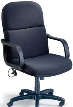 Mayline Comfort Big and Tall/24-hour Loop Arm Heavy Duty Chair 1801AG
